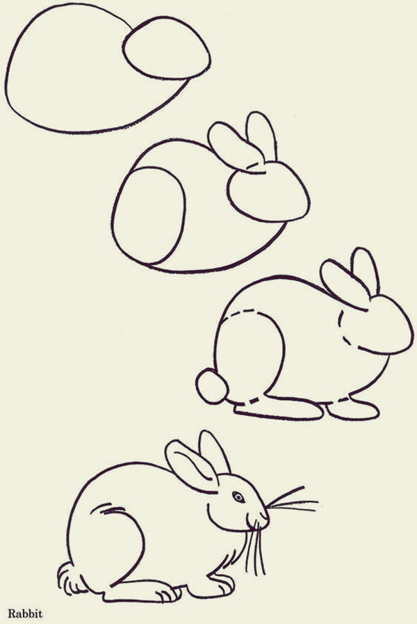 How to draw Cute Animals (3)