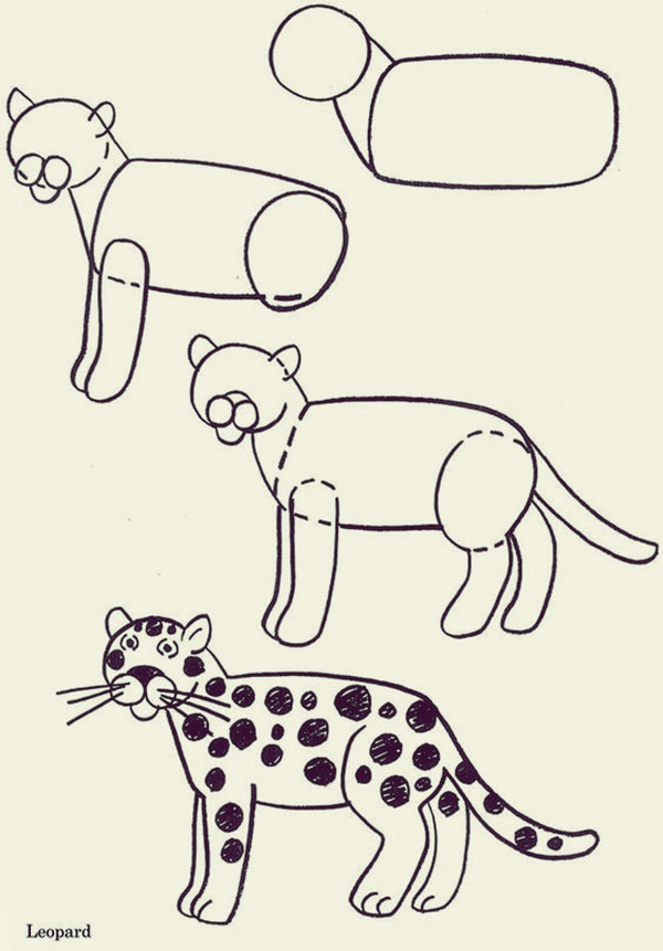 How to draw Cute Animals (39)