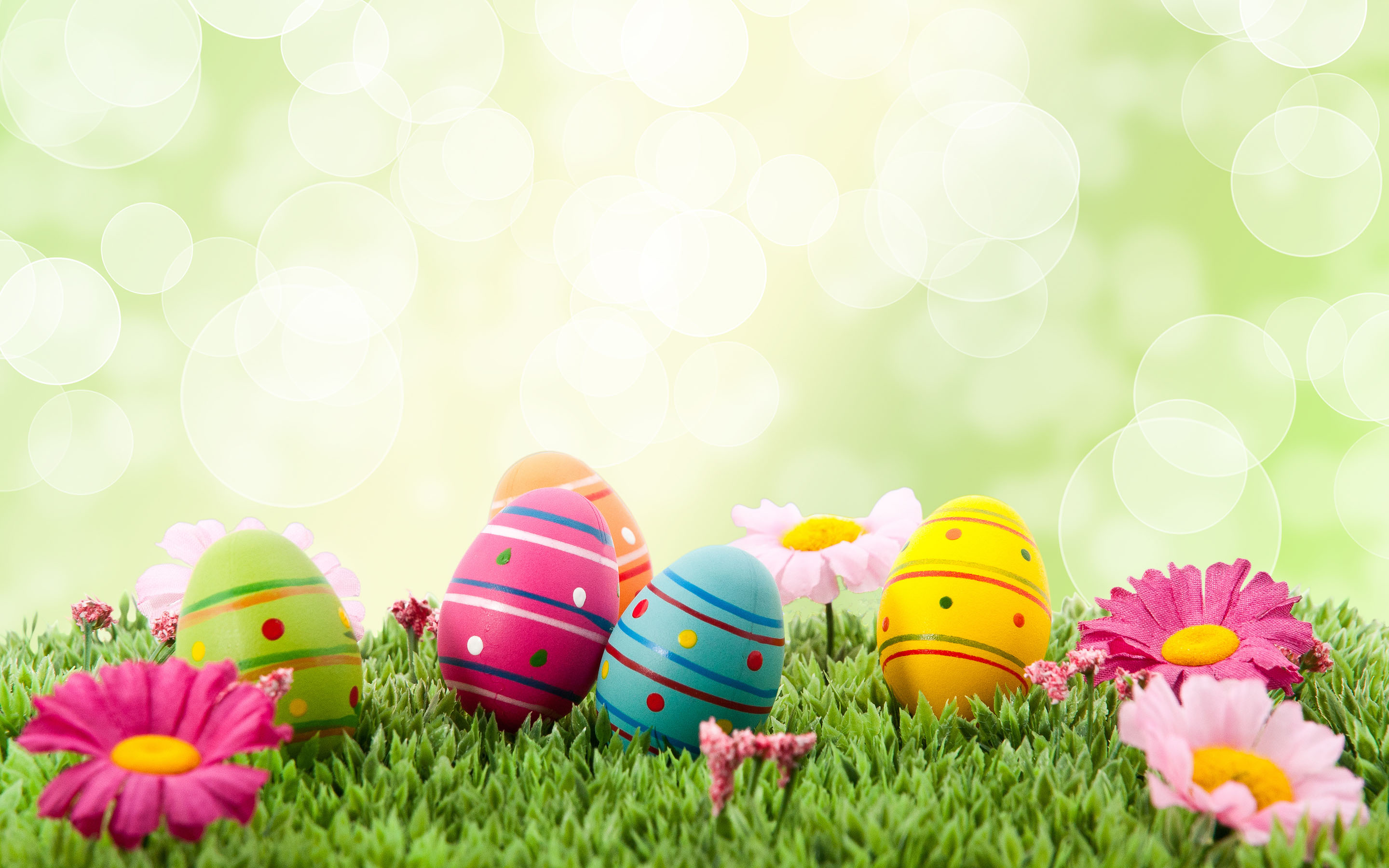 Easter Backgrounds For Your Laptop (17)