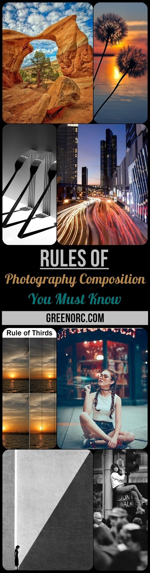 Rules of Photography Composition You Must Know