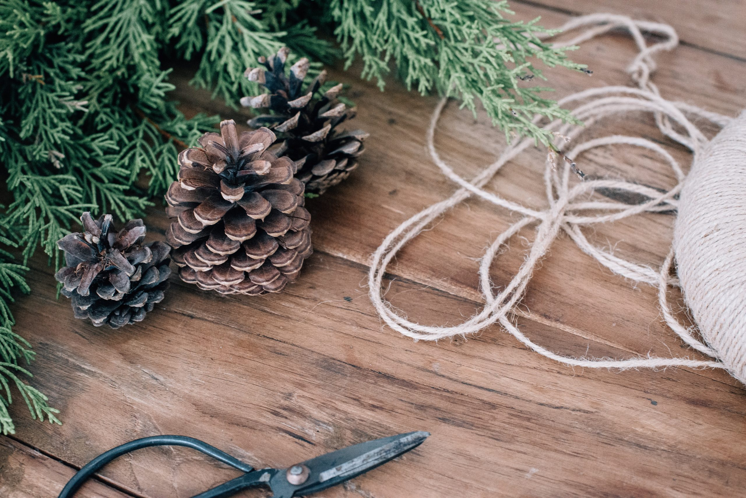 A Christmas tree alongside three pinecones, scissors, and a ball of thread.