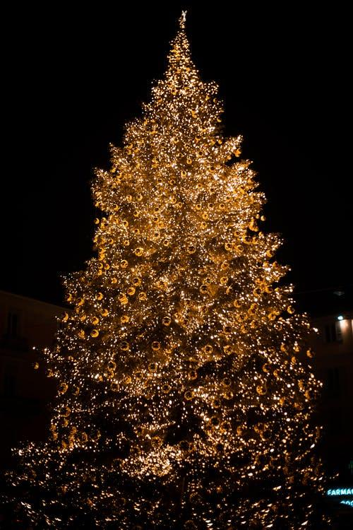 A Christmas tree decorated with fairy lights in the night.