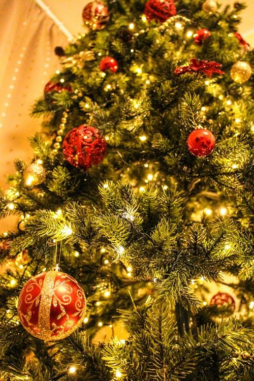 Shiny gold and red decorations hanging on a Christmas tree.