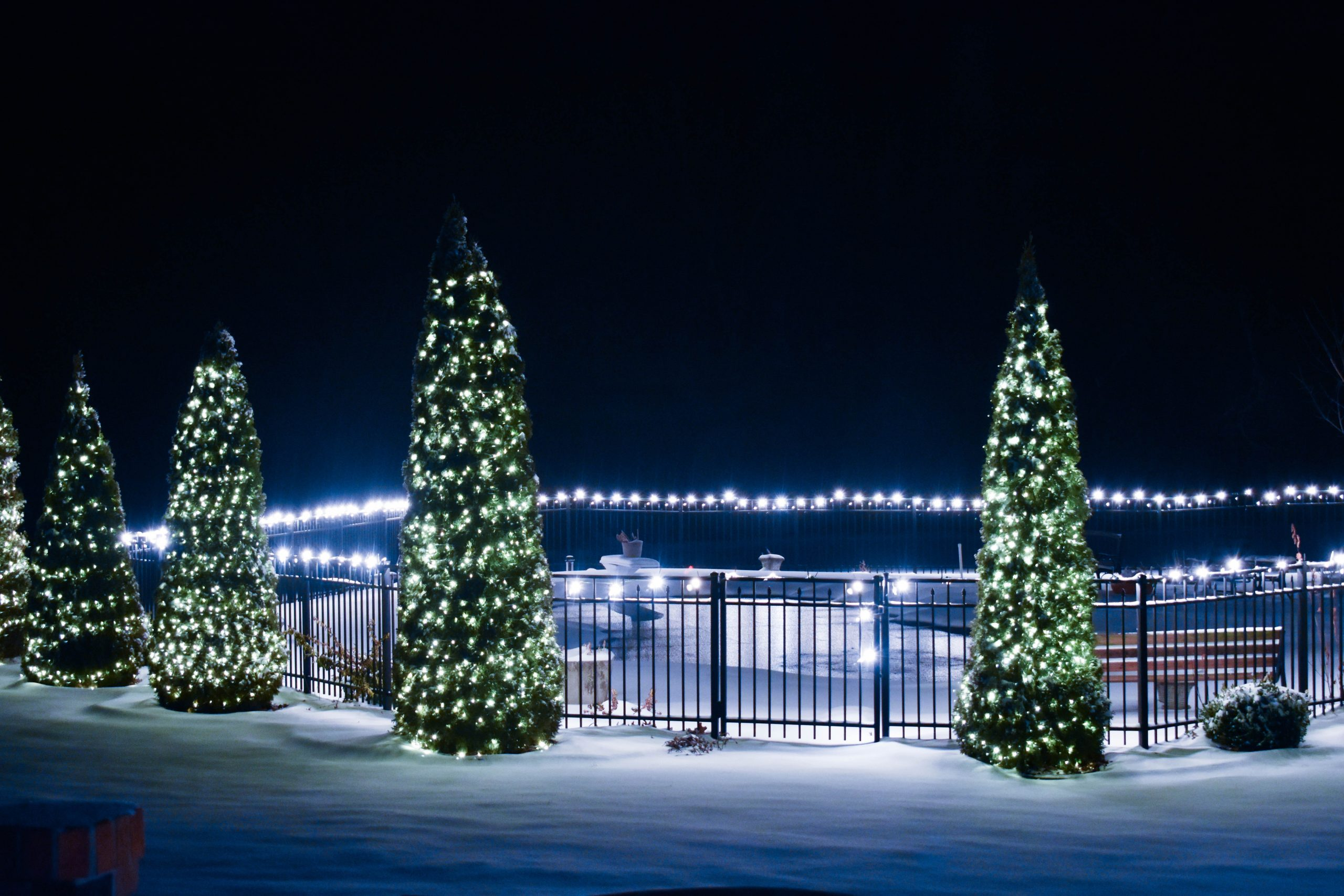 A line of outdoor Christmas trees with lights on a snowy night to showcase the Christmas decorations.