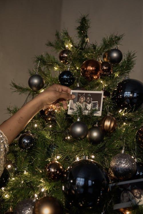 Person holding a black and white photograph against a decorated Christmas tree.