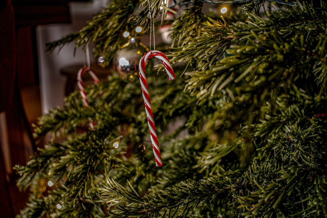 Red and white candy cane ornament on a Christmas tree