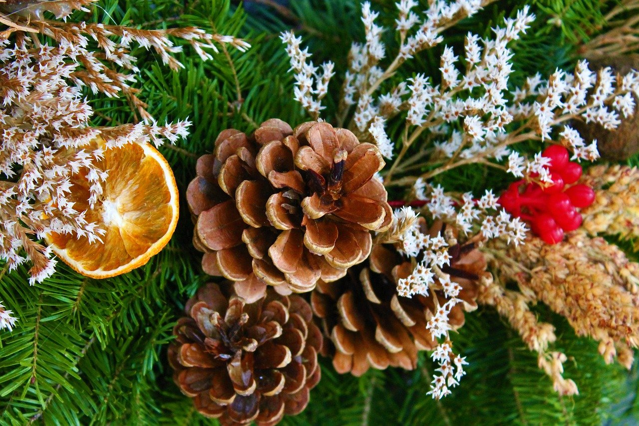 Three big, brown pine cones, white and brown flowers, red berries, and an orange peel decoration on the green leaves of a Christmas tree.