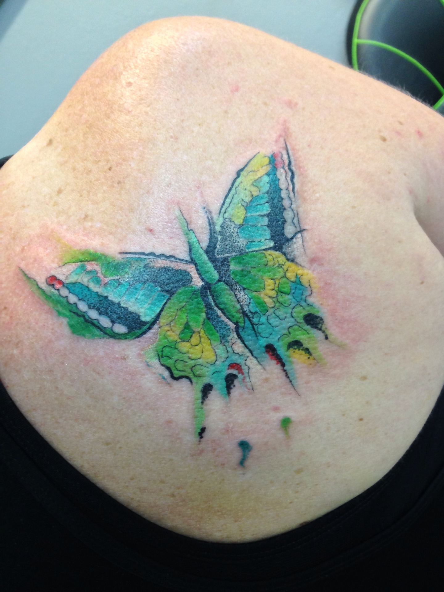 Colorful, Watercolor, Butterfly, Tattoo